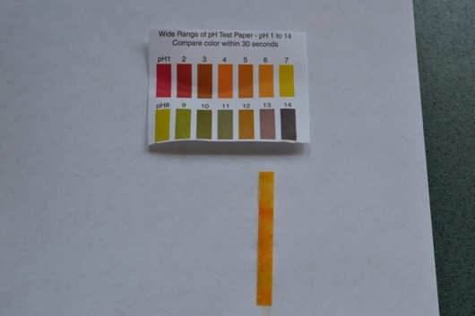 pH strip showing 6.0